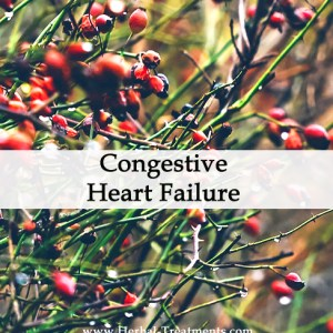 Herbal Medicine for Congestive Heart Failure