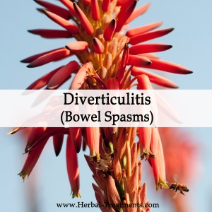 Herbal Medicine for Diverticulitis