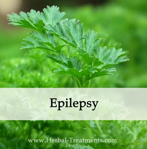 Herbal Medicine for Epilepsy