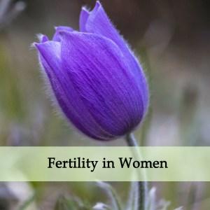 Herbal Medicine for Fertility in Women