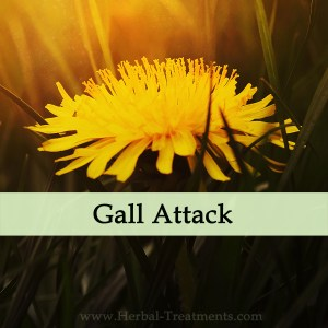 Herbal Medicine for Gall Attack Acute