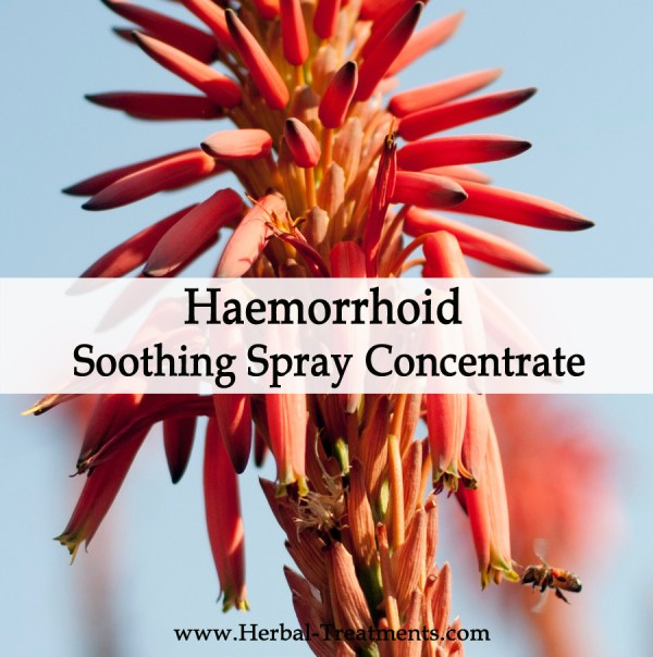 Herbal Medicine for Haemorrhoid Soothing Spray Concentrate
