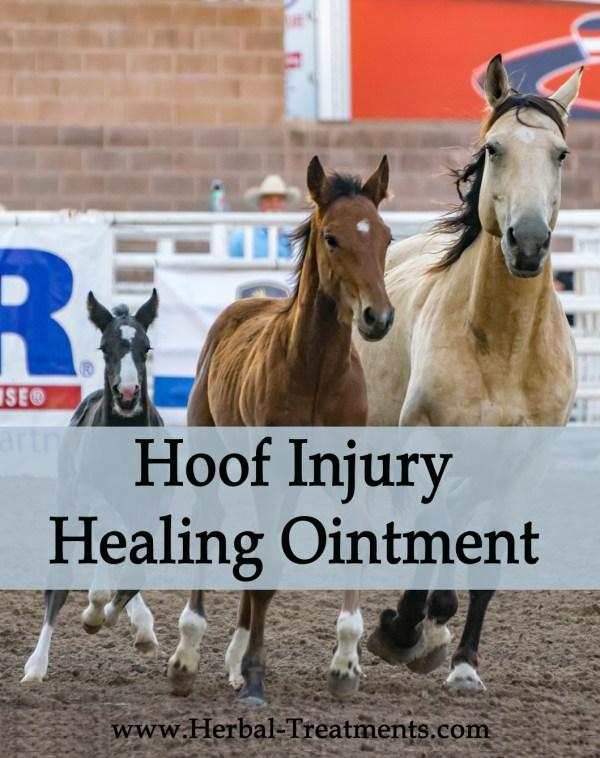 Hoof Injury Healing Ointment
