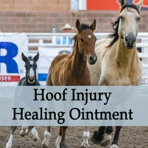 Hoof Injury Healing Ointment