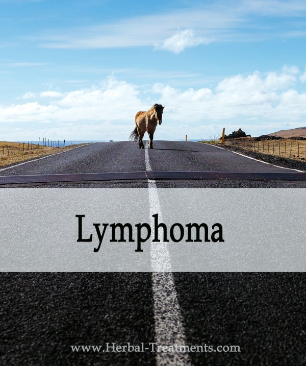 Herbal Treatment for Lymphoma in Horses