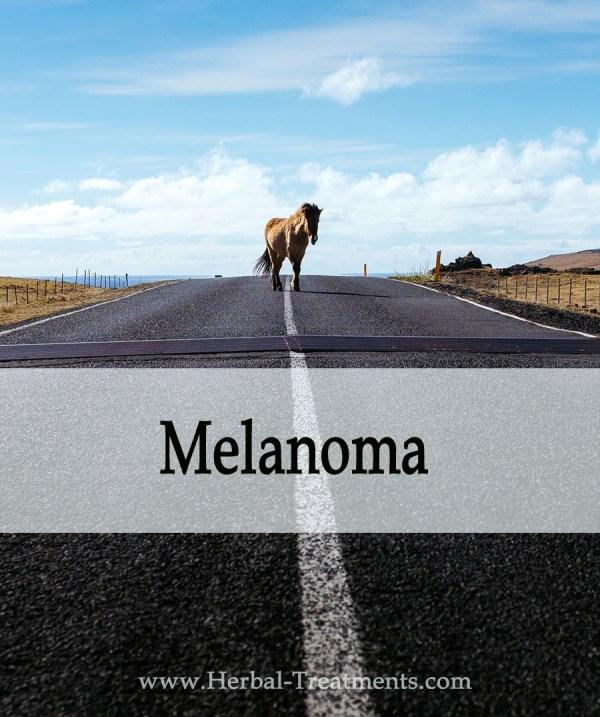 Herbal Treatment of Melanoma (Skin Cancer) in Horses