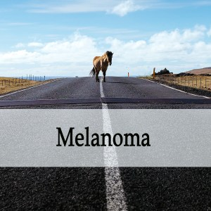 Herbal Treatment of Melanoma (Skin Cancer) in Horses