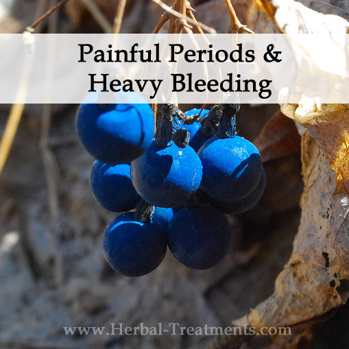 Herbal Medicine for Painful Periods & Heavy Bleeding