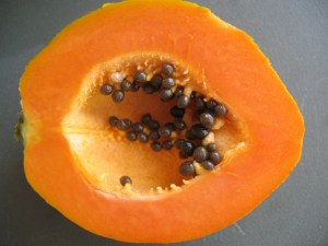 Carica Papaya is in Paw Paw Ointment used to carry herbal treatments.