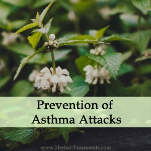 Herbal Medicine for Prevention of Asthma Attacks