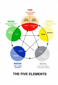 The Five Elements Kinesiology Information