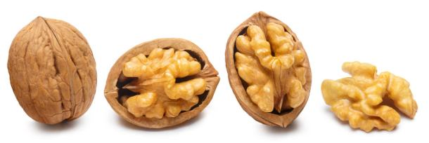 walnuts in their shell and out of their shell