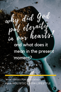 Why Did God Put Eternity in Our Hearts