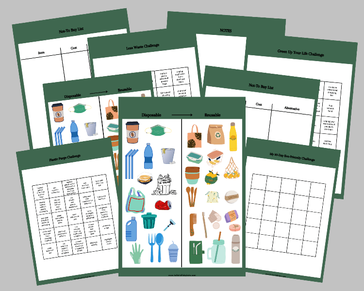 sustainable living free worksheets