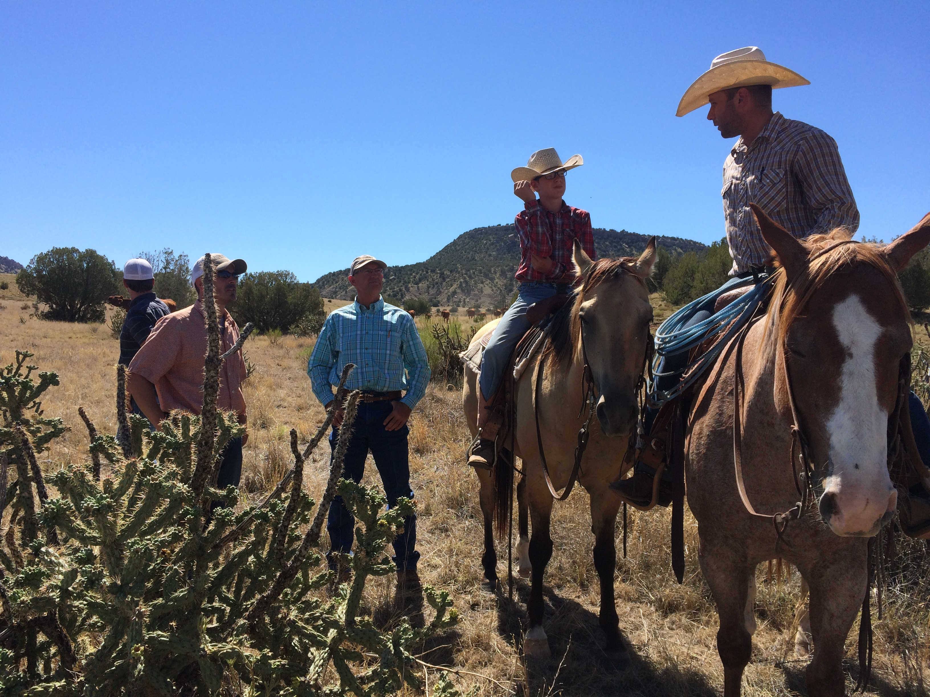 Tnc With Iconic Je Canyon Ranch And Conservation Planning