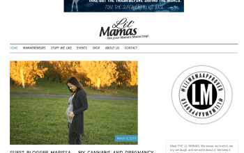 I'm the Guest Blogger  Featured On The Lil' Mamas Today!