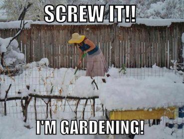 screw it im gardening