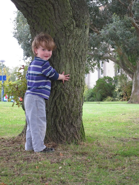 Tree hugger on UKent campus