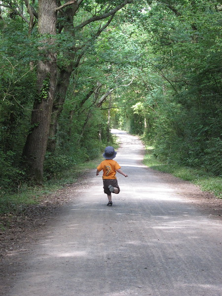 Charlie dashes on the downhill section