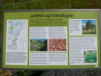 MAS-2012-07-11-IMG_4964