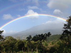 Rainbows in Boquete never stop amazing me!