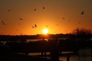 A beautiful sunrise!