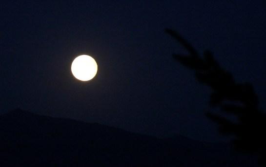 Good night moon!