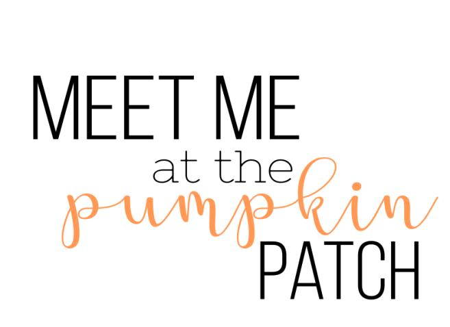 MeetMePumpkinPatch