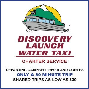 discovery-launch-web-ad