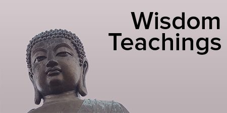 wisdom-teaching-buttons-rollover