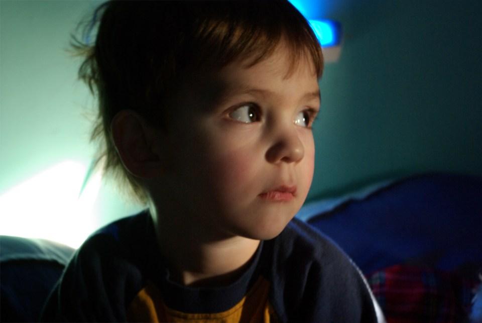 Boy in Blue by Holly Wilson