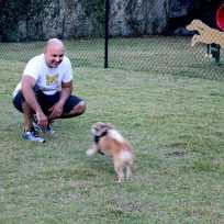 IMG_2432 Hollywood couple pursues passion for pets as professional dog walkers
