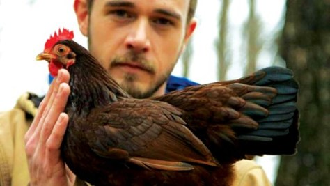 chickenpeople