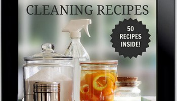 Homemade non toxic cleaners recipe book hollywood homestead giveway and coupon code diy non toxic cleaning recipes ebook fandeluxe Gallery
