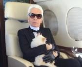 Nu Karl Lagerfelds erfenis niet naar kat Choupette mag… Strijd om 200 miljoen barst los