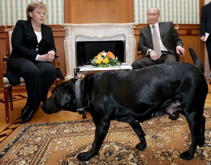 プーチン メルケル 犬