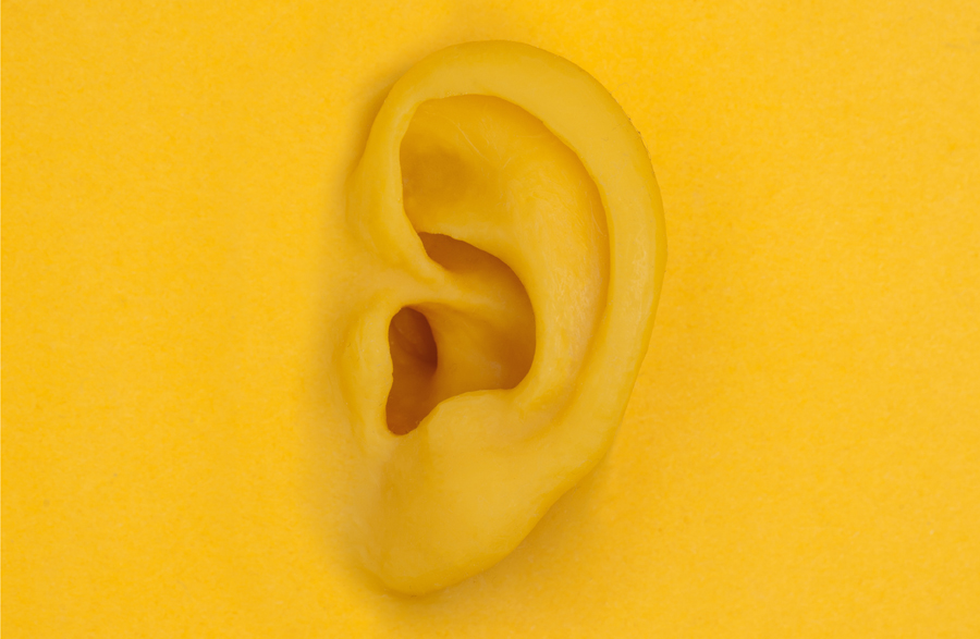 yellow ear_221907043 Horizontal