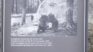 the zoo 1b