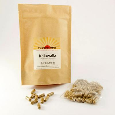 Kalawalla 500 mg, Polypodium leucotomos, 20:1 extract, autoimmune Support, Immune Balancer, Immune Modulator, herbal remedy, vegan, natural