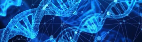 DNA og slægtsforskning