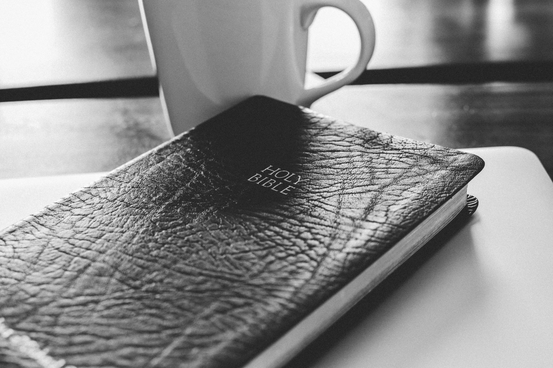 Bible Covers Review