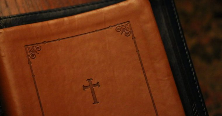 Leather Bibles