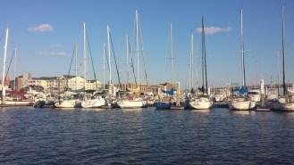 Sail boat harbor GOOD