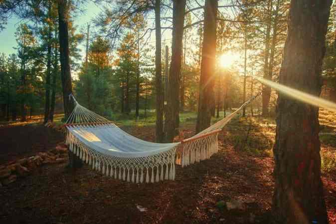 arizona-road-trip-itinerary-flagstaff-airbnb-hammock
