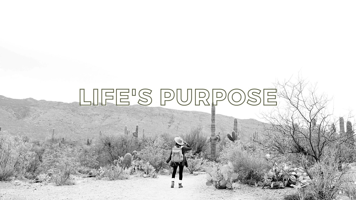 Ways To Discover Your Purpose in Life
