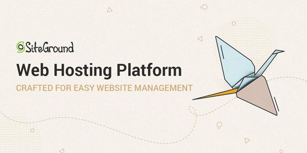 Site Ground web hosting