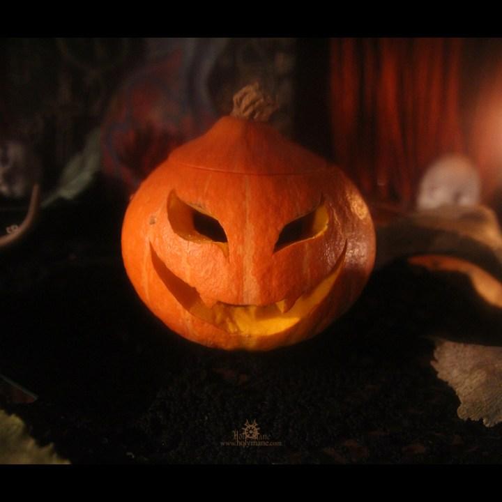 2010_Halloween492