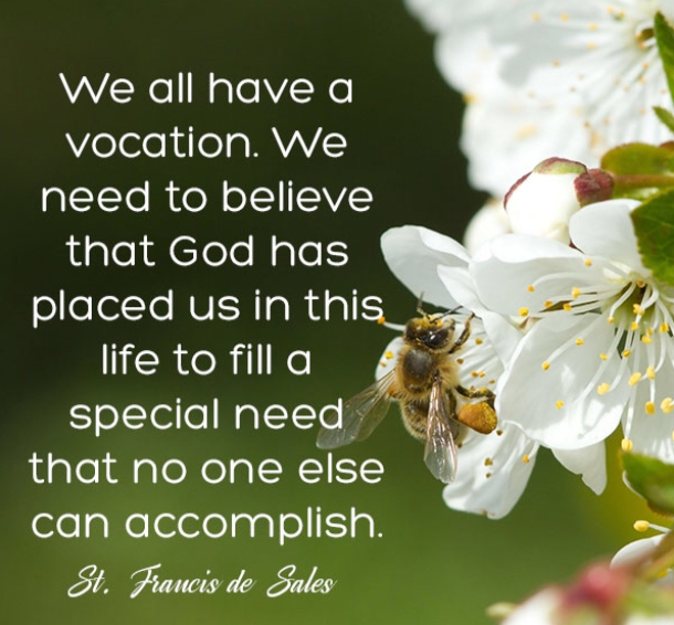 5th Sunday in the Ordinary Time: Everyone Has a Vocation!