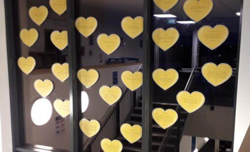 Yellow-Hearts-Display