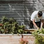 photo of a man tending his home garden; Photo by Priscilla Du Preez on Unsplash